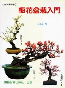 梅花盆栽入門