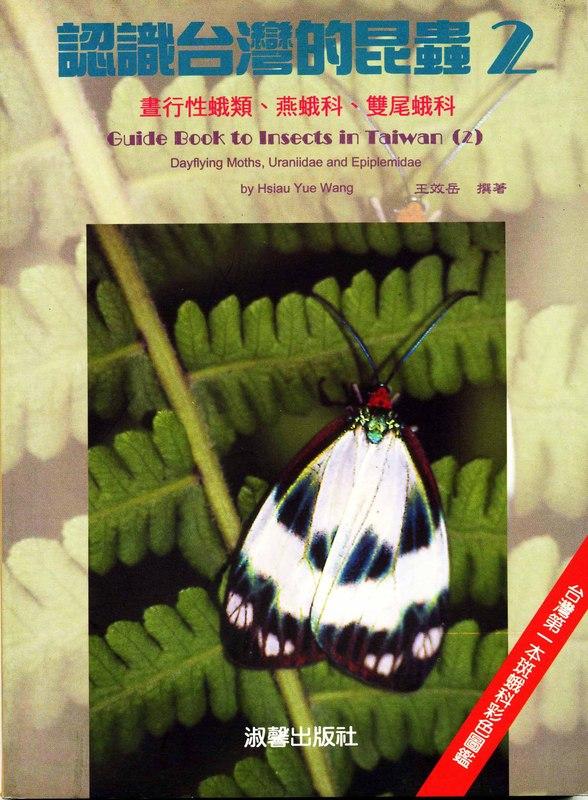 認識台灣的昆蟲(2):翅鱗目-晝行性蛾類