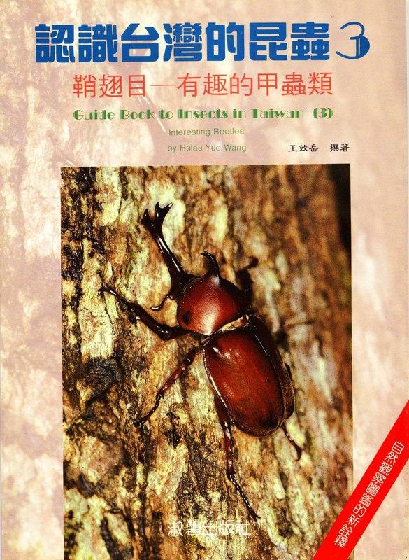 認識台灣的昆蟲(3):鞘翅目─有趣的甲虫類