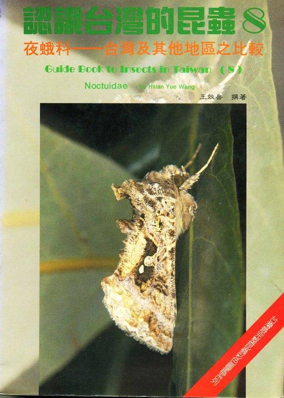 認識台灣的昆蟲(8):夜蛾科─台灣及其他地區之比較