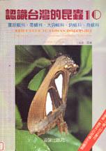 認識台灣的昆蟲(10):籮紋蛾科、帶蛾科、大鉤蛾科、鉤蛾科、舟蛾科
