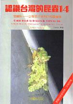 認識台灣的昆蟲(14):夜蛾科─台灣鄰近地區的相關種類(中)